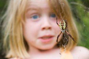 инсектофобию провоцируют негативные ситуации в раннем детстве