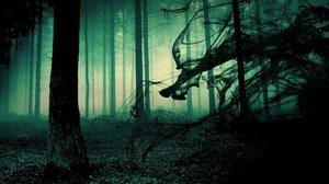 страх темного леса имеет эволюционные корни
