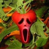 люди с фобией видят овощи страшными
