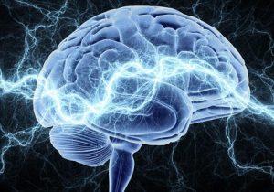 амигдала влияет на формирование фобий