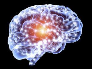 нейронные связи в мозге