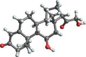 гормон кортикостерон