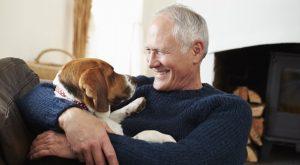 терапия помогает преодолеть страх перед животным
