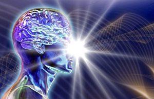 мозг реагирует на опасность